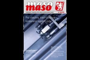 maso 2013-1