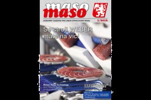 maso 2016-1