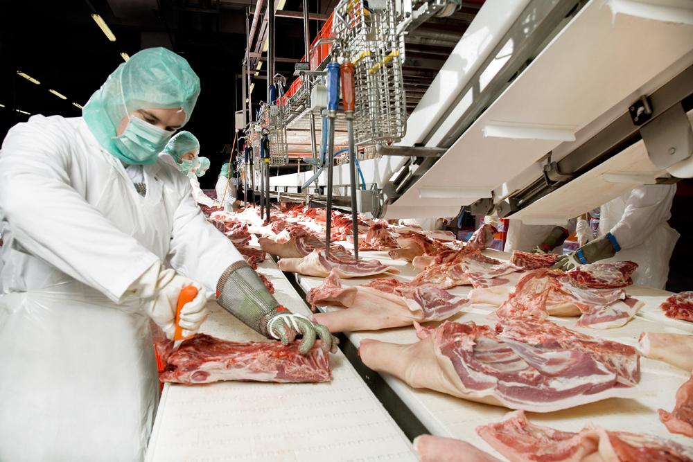Obor zpracování masa jedničkou vněmeckém potravinářství