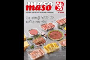 maso 2015-1