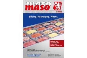 maso 2019-1